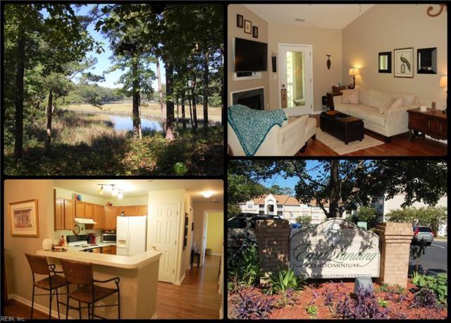 408 Egret Lndg #304, Virginia Beach, VA 23454 (#10221129) :: Momentum Real Estate