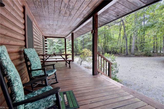 10037 Deer Trace Ln, Gloucester County, VA 23061 (#10221955) :: The Kris Weaver Real Estate Team