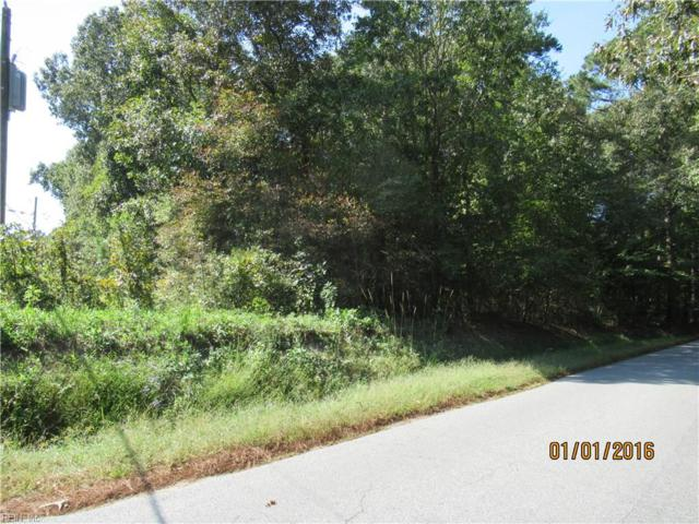 .88 Ac Deer Path Rd, Suffolk, VA 23434 (#10221966) :: Abbitt Realty Co.