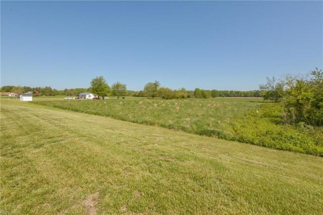 119 Swan Dr, Northampton County, VA 23405 (#10222863) :: Vasquez Real Estate Group