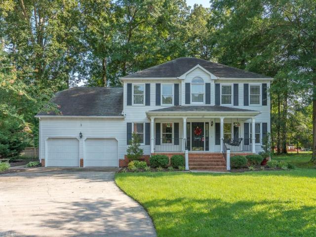 301 Spice Bush Ct, Chesapeake, VA 23320 (#10222932) :: The Kris Weaver Real Estate Team