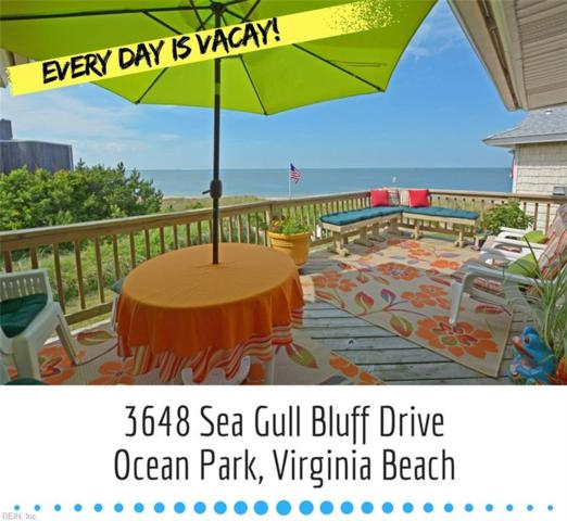 3648 Sea Gull Bluff Dr, Virginia Beach, VA 23455 (#10222938) :: The Kris Weaver Real Estate Team
