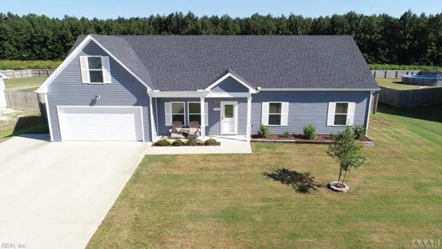 180 Laurel Woods Way, Currituck County, NC 27929 (#10222941) :: The Kris Weaver Real Estate Team