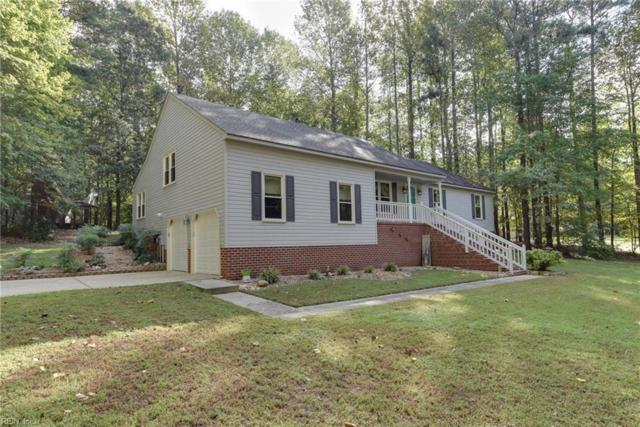 133 Holloway Dr, Isle of Wight County, VA 23430 (#10222975) :: The Kris Weaver Real Estate Team