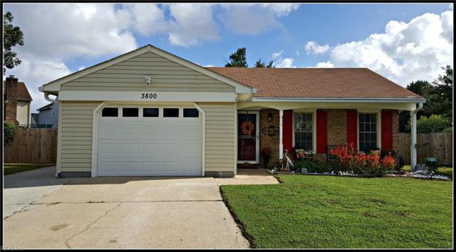 3800 Daiquiri Ct, Virginia Beach, VA 23456 (#10223105) :: The Kris Weaver Real Estate Team