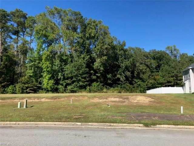 1012 White Herons Ln, Suffolk, VA 23434 (#10223325) :: Abbitt Realty Co.