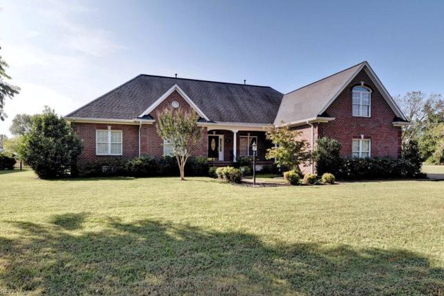 100 Ambrits Way, York County, VA 23693 (#10223603) :: The Kris Weaver Real Estate Team
