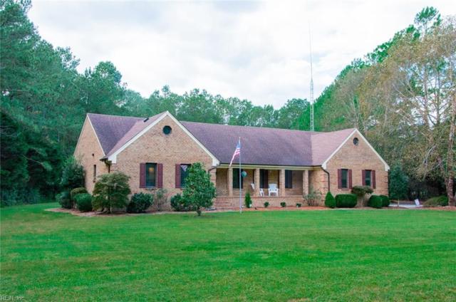 708 Pleasant Ridge Ct, Chesapeake, VA 23322 (#10223811) :: Abbitt Realty Co.