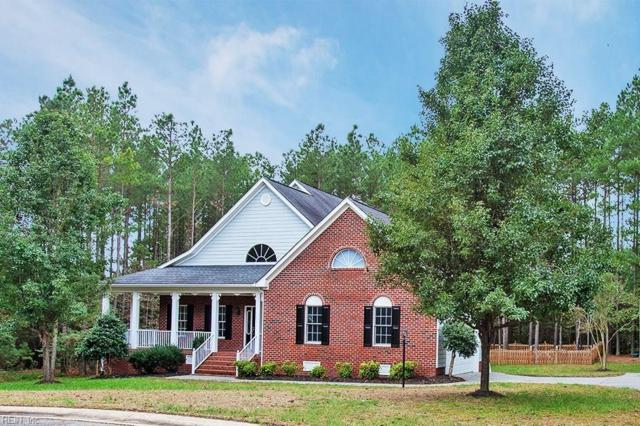 5056 Kings Pond Ct, New Kent County, VA 23140 (#10223855) :: Berkshire Hathaway HomeServices Towne Realty