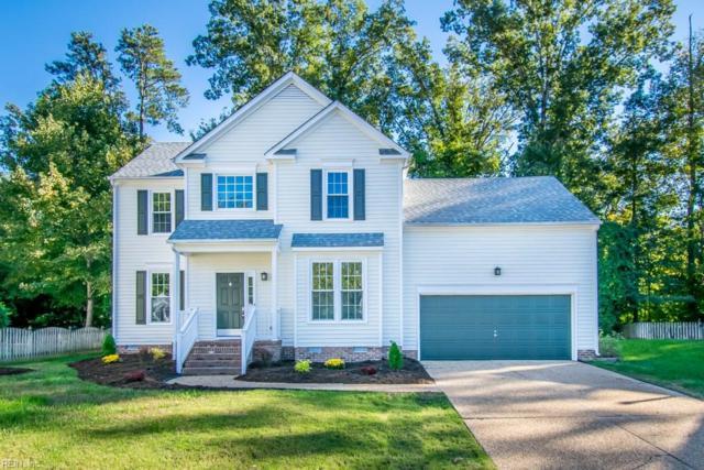 3449 Mallard Creek Rn, James City County, VA 23185 (#10224002) :: Abbitt Realty Co.