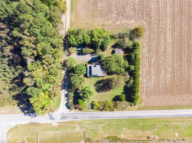 25393 Old Mill Rd, Isle of Wight County, VA 23487 (#10224261) :: RE/MAX Central Realty