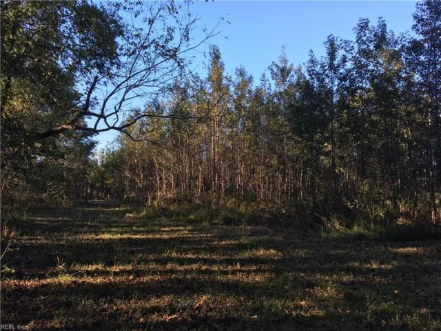 3.5AC Sleepy Hole Rd, Suffolk, VA 23435 (#10224279) :: Berkshire Hathaway HomeServices Towne Realty