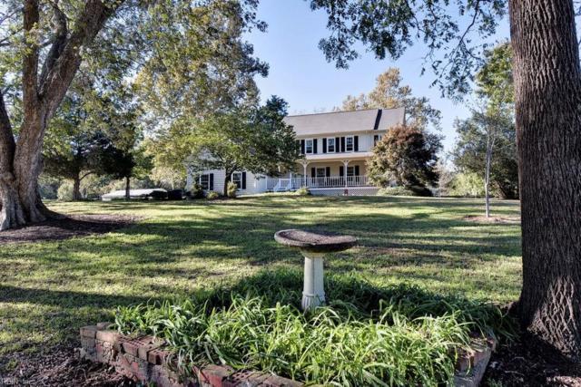 8621 Merry Oaks Ln, James City County, VA 23168 (#10224403) :: Abbitt Realty Co.