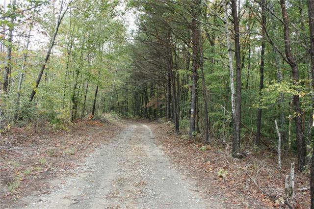 15 Acr State Route 309 Rd, King & Queen County, VA 23091 (#10226094) :: Abbitt Realty Co.