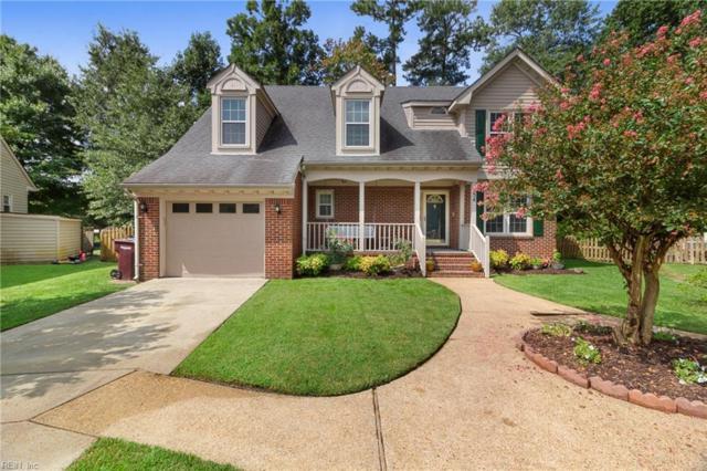454 Supplejack Ct, Chesapeake, VA 23320 (#10226381) :: Coastal Virginia Real Estate