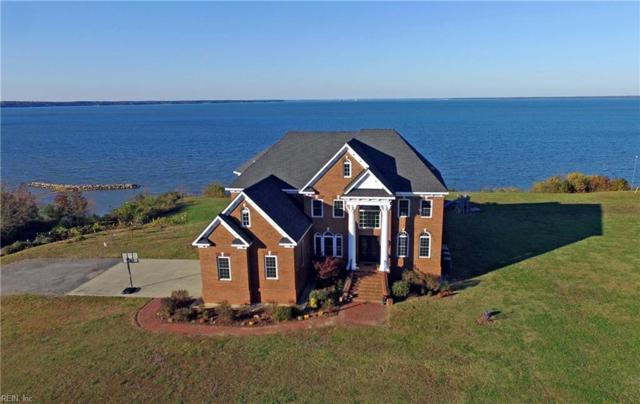 16973 Rivers Edge Trl, Isle of Wight County, VA 23430 (#10226509) :: AMW Real Estate