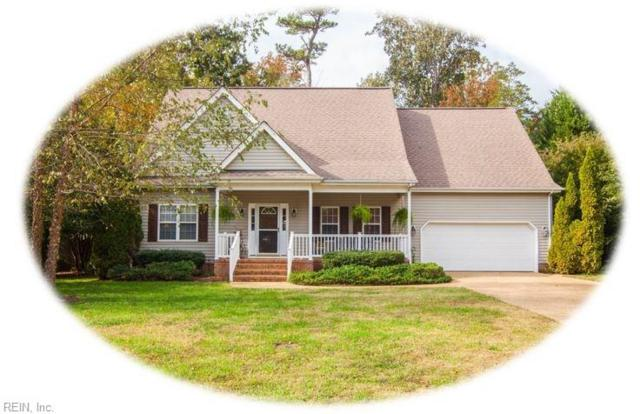 3772 Captain Wynne Dr, James City County, VA 23185 (MLS #10227626) :: Chantel Ray Real Estate