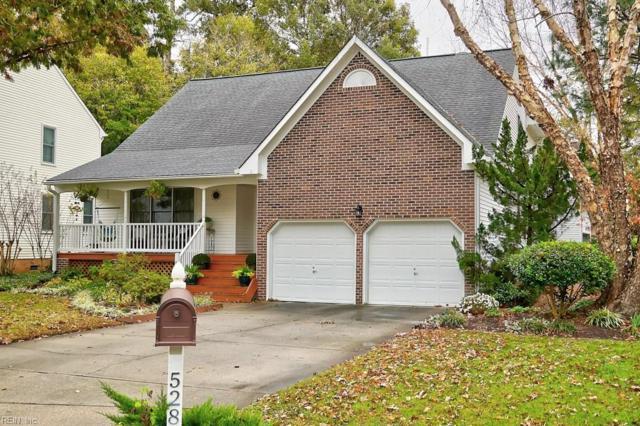 528 Broad Bend Cir, Chesapeake, VA 23320 (#10227648) :: Coastal Virginia Real Estate