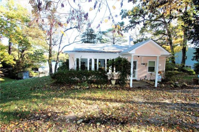 115 Hanamalea Ln, Middlesex County, VA 23169 (#10227772) :: Chad Ingram Edge Realty