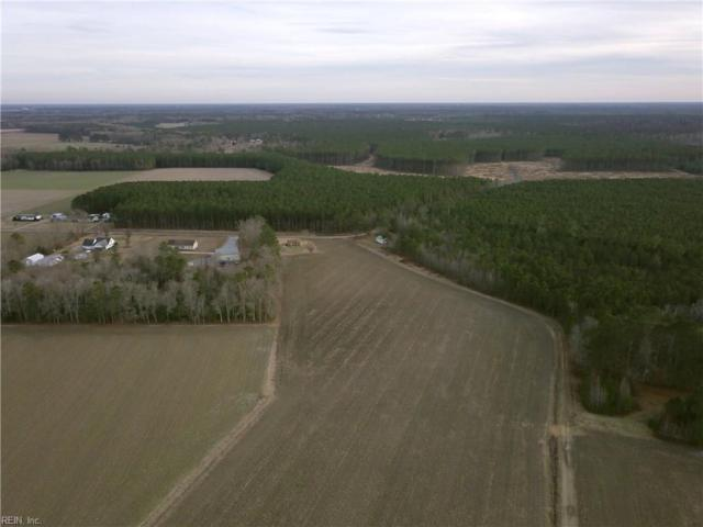 22 Ac Parsons Dr, Isle of Wight County, VA 23487 (#10228083) :: Coastal Virginia Real Estate