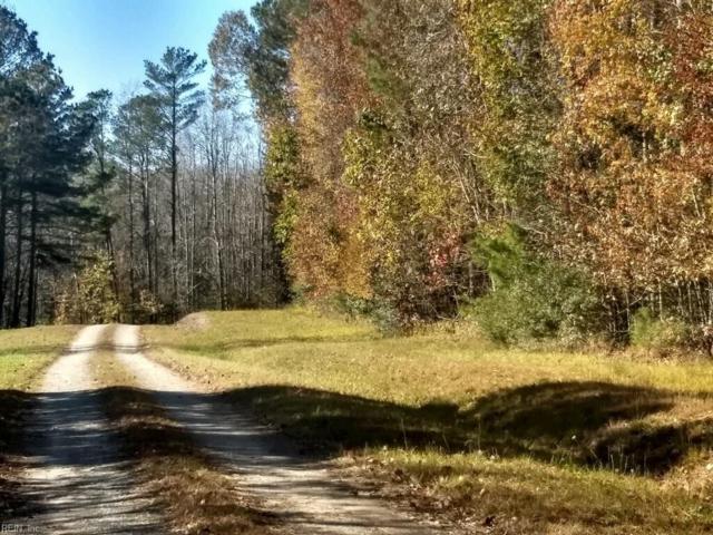 LOT 31 Old Cabin Ln, Gloucester County, VA 23061 (#10228269) :: Chad Ingram Edge Realty