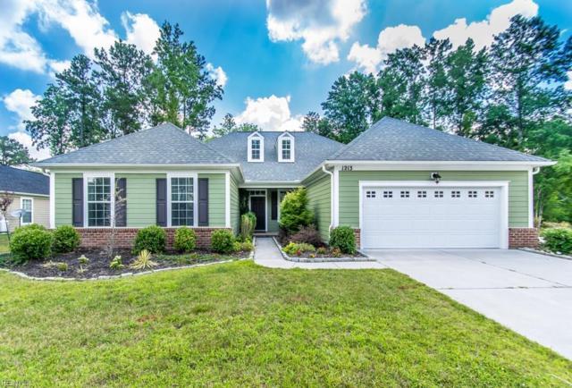 1213 Willow Lakes Ct, Chesapeake, VA 23321 (#10228270) :: Abbitt Realty Co.