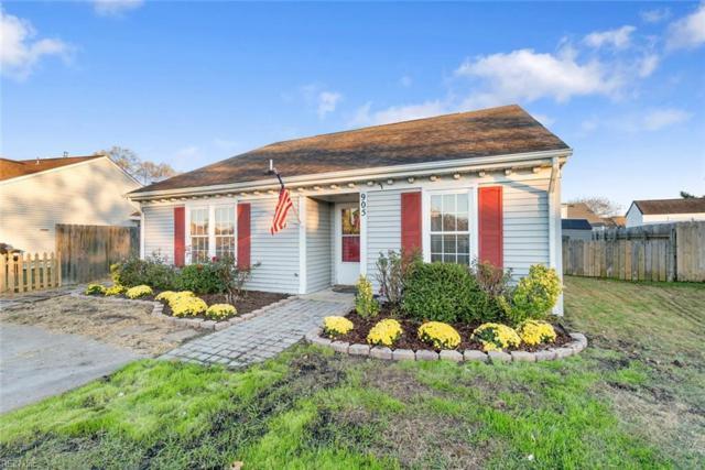 905 Pink Star Ct, Virginia Beach, VA 23454 (#10229017) :: Vasquez Real Estate Group