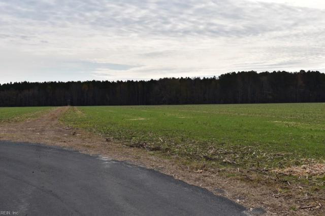 30 Ac Parsons Rd, Accomack County, VA 23357 (#10230356) :: Momentum Real Estate