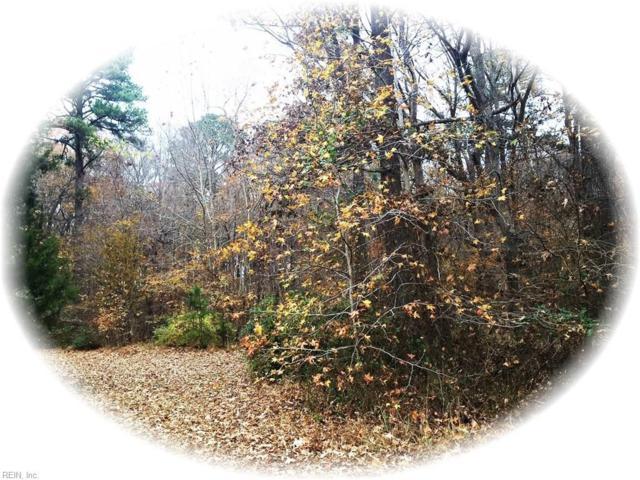 508 Carys Chapel Rd, York County, VA 23693 (#10230901) :: Abbitt Realty Co.