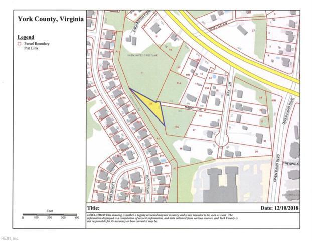 119 Daisy Ln, York County, VA 23693 (#10231345) :: Abbitt Realty Co.