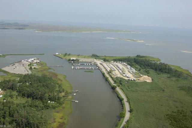 2 Bells Island Dr, Hampton, VA 23664 (#10231843) :: The Kris Weaver Real Estate Team