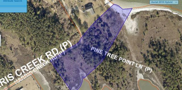 400 Harris Creek Rd, Hampton, VA 23669 (#10231848) :: The Kris Weaver Real Estate Team