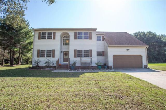 23282 Lake Shores Ct, Isle of Wight County, VA 23314 (#10231978) :: Abbitt Realty Co.