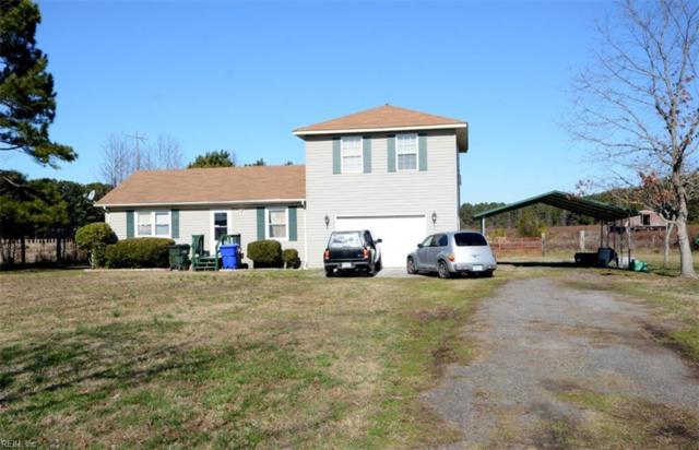 2560 Indian Trl, Suffolk, VA 23434 (#10233339) :: Austin James Real Estate