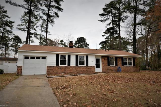3628 Silina Drive Dr, Virginia Beach, VA 23452 (#10233347) :: The Kris Weaver Real Estate Team