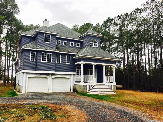 12024 Hacksneck Rd, Accomack County, VA 23358 (#10234110) :: Berkshire Hathaway HomeServices Towne Realty
