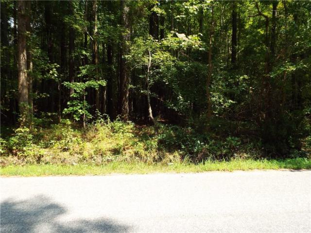 LOT 53 Browns Ave, Southampton County, VA 23866 (#10234536) :: Berkshire Hathaway HomeServices Towne Realty