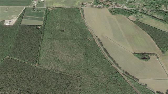 61 Ac Wedgewood Dr, Suffolk, VA 23438 (#10234806) :: Coastal Virginia Real Estate