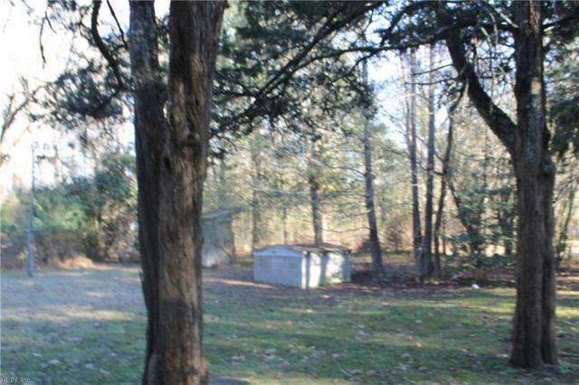 23101 Main St, Southampton County, VA 23837 (#10236091) :: Austin James Real Estate