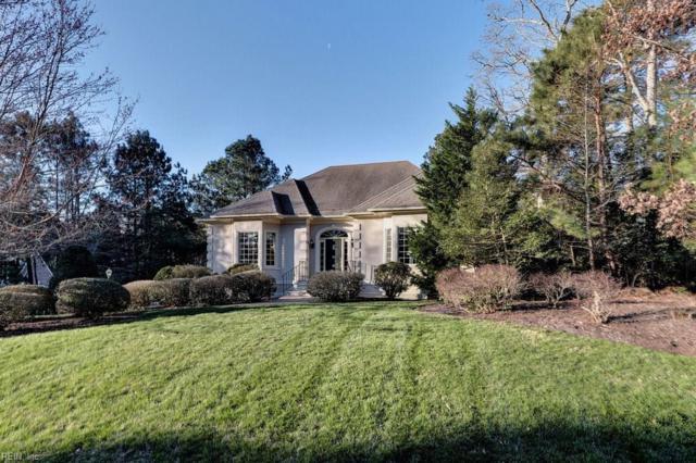 3044 Nathaniels Green, James City County, VA 23185 (#10236119) :: Reeds Real Estate