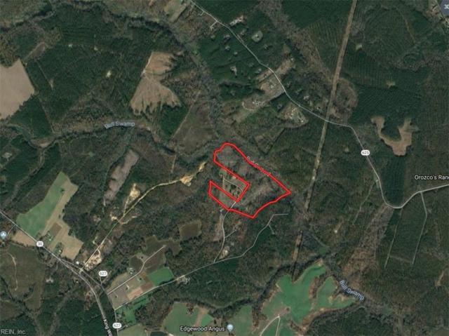 46AC Pierce Ln, King William County, VA 23181 (MLS #10236205) :: Chantel Ray Real Estate