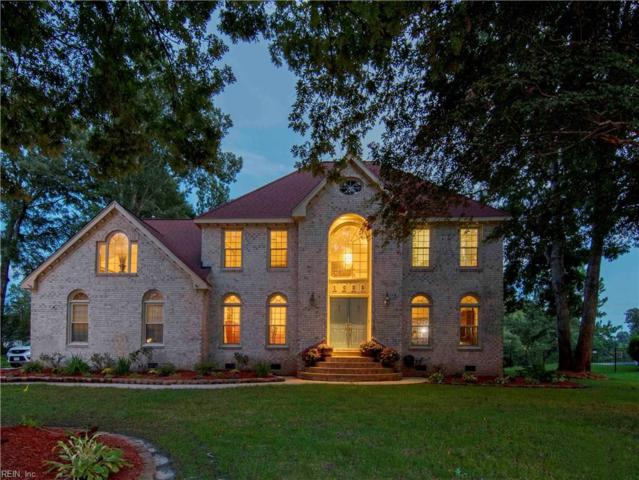 1032 Smokey Mountain Trl, Chesapeake, VA 23320 (#10236395) :: Momentum Real Estate