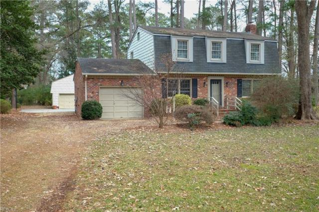 217 Hall Dr, Chesapeake, VA 23322 (#10236524) :: The Kris Weaver Real Estate Team
