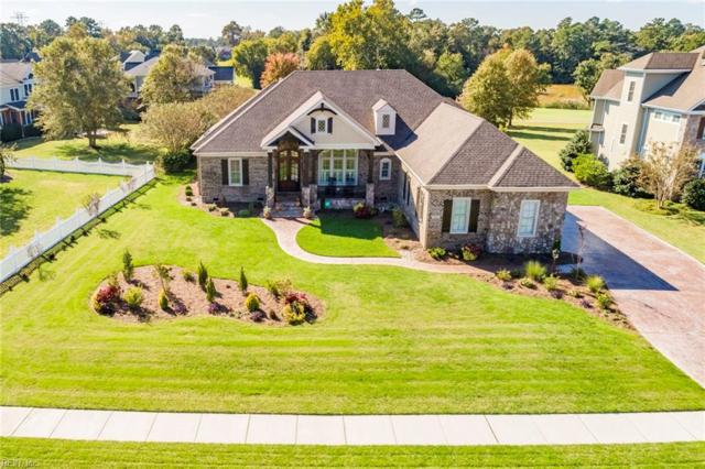 3003 N James Dr, Suffolk, VA 23435 (#10236620) :: Atlantic Sotheby's International Realty