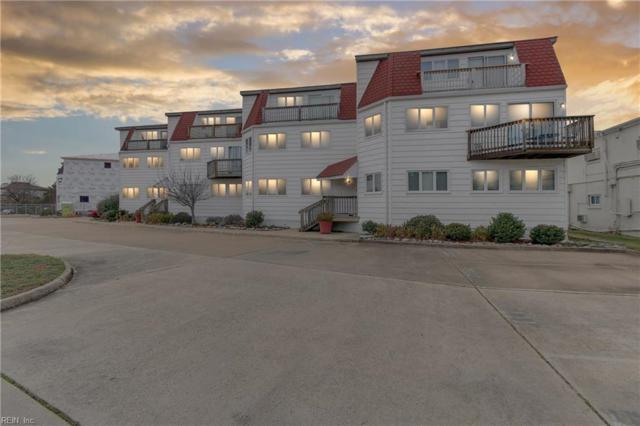 205 Lake Drive Dr, Virginia Beach, VA 23451 (#10236722) :: Austin James Real Estate