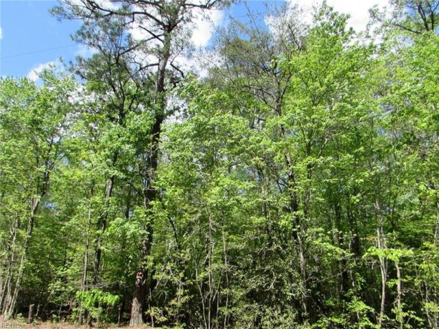 5.67 Acres Indian Rd, Gloucester County, VA 23061 (#10236723) :: Austin James Real Estate