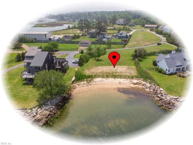 111 Sandbox Ln, York County, VA 23692 (#10236866) :: AMW Real Estate