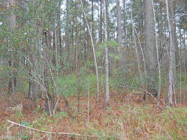 Lot 5 Bank St, Sussex County, VA 23890 (#10236979) :: Berkshire Hathaway HomeServices Towne Realty