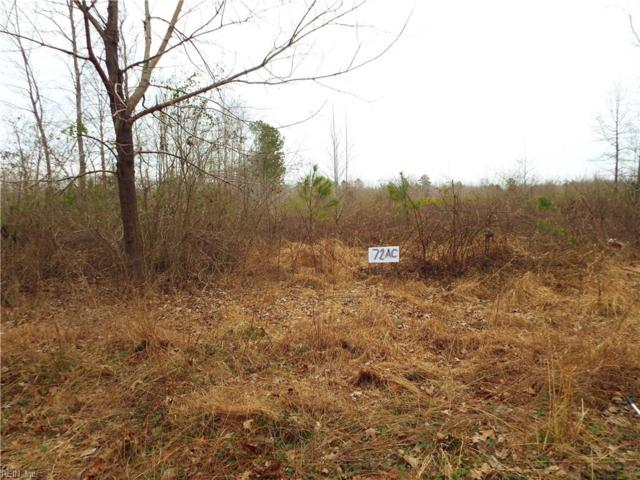 72 Ac Chambliss Rd, Emporia, VA 23847 (#10238403) :: Rocket Real Estate