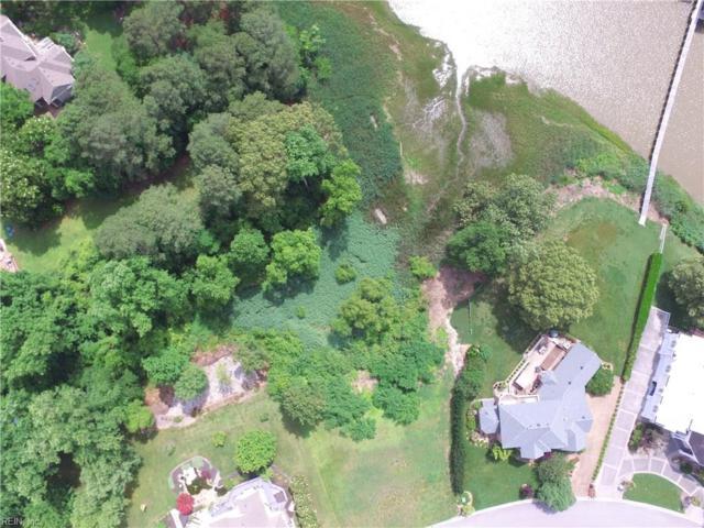405 Blue Heron Pt, Suffolk, VA 23435 (#10238431) :: Berkshire Hathaway HomeServices Towne Realty